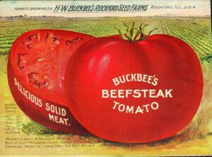 HW Buckbee Catalog, 1905