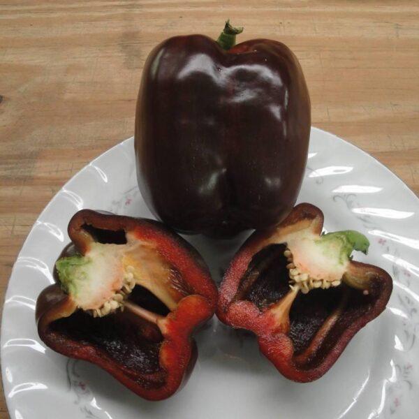Chocolate Cake Bell Pepper